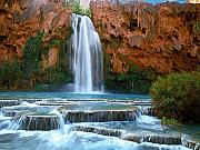 Waterfall Painting Posters - Havasu Falls Poster by David Wagner