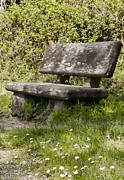 Stone Bench Prints - Have a Seat Print by Heather Applegate