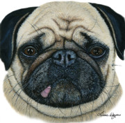 Pug Dog Posters - Have I been Pugged Poster by Liane Weyers
