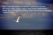 Flying Seagull Art - Have The Courage to Follow Your Heart by Susanne Van Hulst