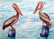 Waterfowl Paintings - Have You Been To The Gulf  by Kandyce Waltensperger