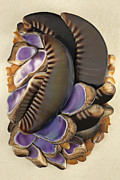 Shells Mixed Media - Hawaii Opus 13 by Carol Zee