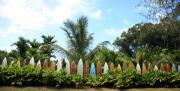 Tropical Island Originals - Hawaii Surfboard Fence by Michael Ledray