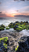 Hawaii Sunset Posters - Hawaii Tide Pool Sunset Poster by Dustin K Ryan