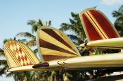 Surfing Art Metal Prints - Hawaiian design surfboards Metal Print by Vince Cavataio - Printscapes