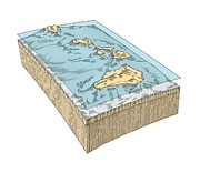 Hawaiian Islands Prints - Hawaiian Islands Topography Print by Gary Hincks