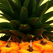 Tropical Fruit Prints - Hawaiian Pineapple Top Print by James Temple