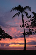 Kathy Schumann - Hawaiian Sunset