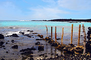 La Perouse Bay Prints - Hawaiian Turquoise Print by keith Ducker