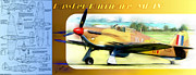 Aircraft Prints - Hawker Hurricane Mk IV Print by Arne Hansen