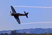 Smoke Trail Framed Prints - Hawker Sea Fury Framed Print by Garry Gay
