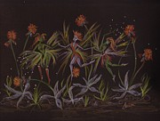 Ballet Dancers Drawings - Hawkweed Dance by Dawn Fairies