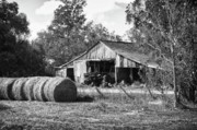 Field Digital Art Originals - Hay and the Old Barn - BW by Michael Thomas