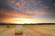 Dramatic Sky Posters - Hay Bale Field At Sunrise Poster by Stu Meech