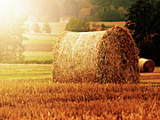 Brightly Lit Posters - Hay Bale Poster by Photographe