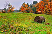 Autumn Scenes Framed Prints - Hay Bales - The Southern Berkshires Framed Print by Thomas Schoeller