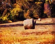 Hay Bales Paintings - Hay Bales by Jai Johnson