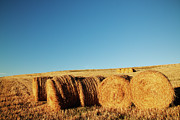 Rural Scene Framed Prints - Hay Bales Framed Print by Matteo Colombo