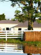 Tennessee Barn Posters - Hay Bales Near the Pond Poster by Todd A Blanchard