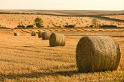 Bale Metal Prints - Hay Bales, North Yorkshire, England Metal Print by John Short