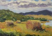 Colorado Greeting Cards Posters - Hay Hay Hay Poster by Zanobia Shalks