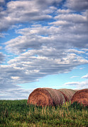 Haybale Photo Prints - Hay Its Art Print by JC Findley