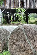Hay Bales Photo Framed Prints - Hay Framed Print by JC Findley