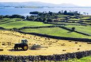 Sunshines Framed Prints - Hay Making, Lough Corrib, Co Galway Framed Print by The Irish Image Collection