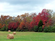 Franklin Tennessee Prints - Hay October Print by Kay Sawyer