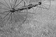 Machinery Photo Posters - Hay Rake  Poster by Wilma  Birdwell