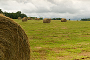 Haybales In Field On Stormy Day Print by Douglas Barnett