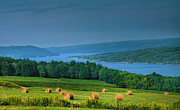 Viticulture Prints - Hayfield And Lake I  Print by Steven Ainsworth