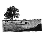 Bales Drawings - Hayfield by Gary Gackstatter