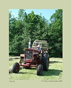 Haying Photos - Haying by Patricia Overmoyer