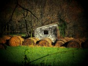 Hayroll Shed Print by Michael L Kimble