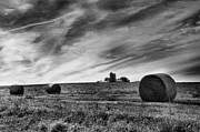 Landscape Greeting Cards Posters - Hayrolls and Field Poster by Steven Ainsworth