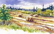 Fir Trees Painting Prints - Hayrolls In The Field Print by Peggy Wilson
