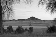 Colorado Mountain Prints Prints - Haystack Mountain - Boulder County Colorado - Black and White Ev Print by James Bo Insogna