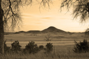 Colorado Mountain Prints Prints - Haystack Mountain - Boulder County Colorado - Sepia Evening Print by James Bo Insogna