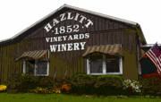 Vineyard Art Digital Art Posters - Hazlitt Winery 1852 Poster by David Lee Thompson