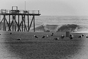Beaches Framed Prints - HDR Black White Beach Beaches Ocean Sea Seaview Waves Pier Photos Pictures Photographs Photo Picture Framed Print by Pictures HDR