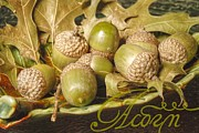 Austin Digital Art Posters - HDR Green Acorns in a Dish Poster by Jennifer Holcombe