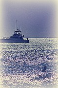 Buy Sell Photo Posters - HDR Purple Haze Boat Boats Sea Ocean Photos Photography Buy Sell Selling Gallery Pictures New Photo Poster by Pictures HDR