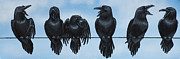 Ravens Metal Prints - He Who Speaks Loudest Has the Least to Say Metal Print by Beth Davies