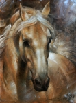 Horse Framed Prints - Head Horse 2 Framed Print by Arthur Braginsky