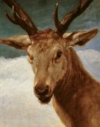 Wild Animals Metal Prints - Head of a Stag Metal Print by Diego Rodriguez de Silva y Velazquez