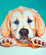 Paws Painting Originals - Head on Pause Lab by Melinda Page