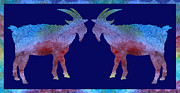 Goat Digital Art Metal Prints - Head to Head Metal Print by Jenny Armitage