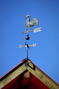 Weather Vane Prints - Headed South Print by Teresa Mucha