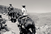 South Kaibab Trail Photos - Heading Back Up BW by Julie Niemela